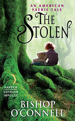 the stolen by bishop o'connell book cover