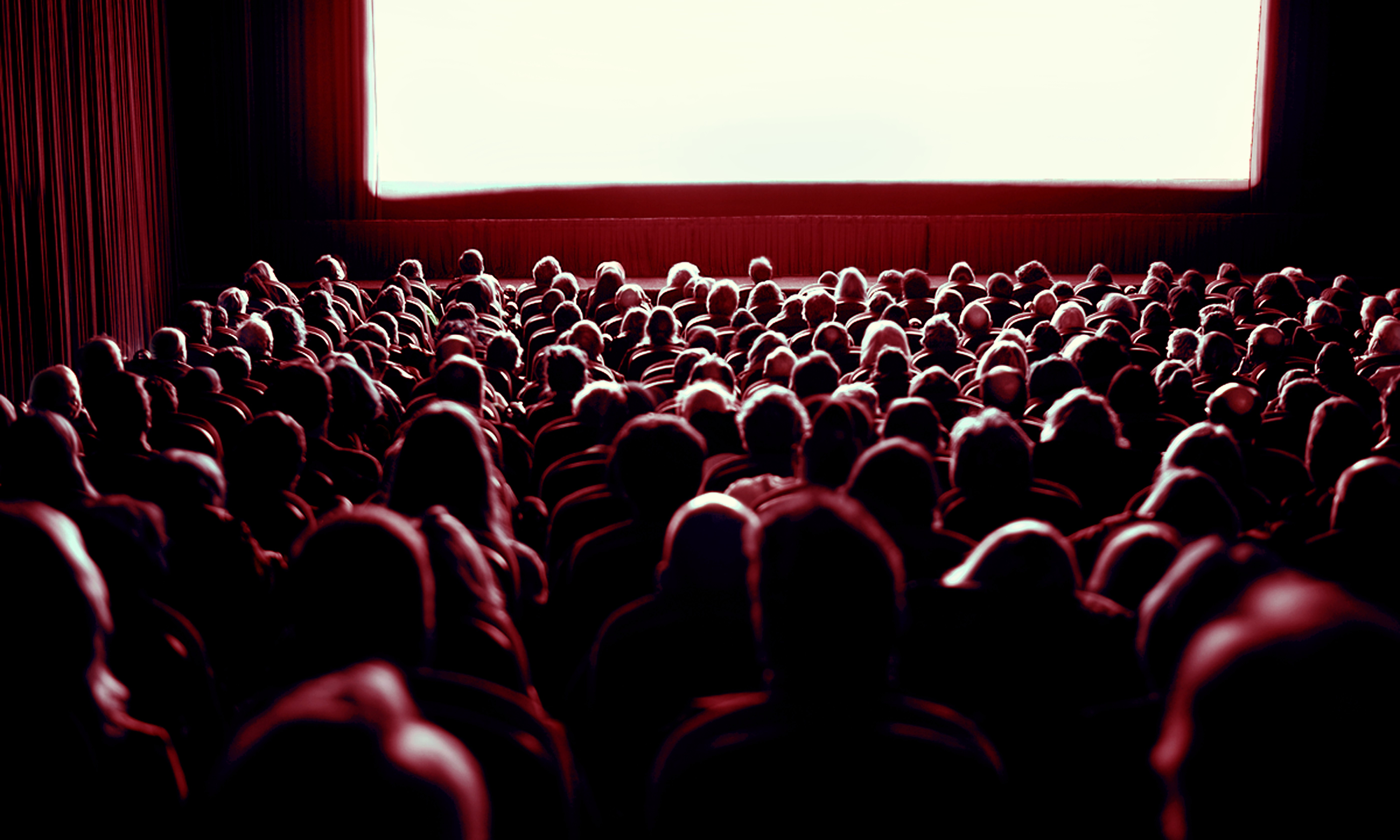 crowd in movie theater image