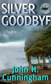 silver goodbye by john h cunningham book cover