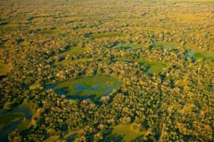 Pantanal Wetlands Brazil