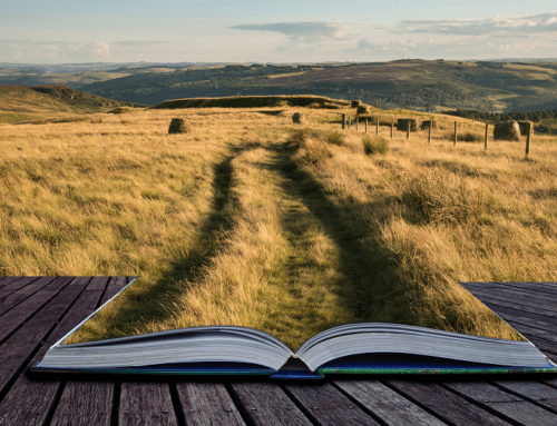 Paths to Publishing: Thinking Ahead A primer on traditional and independent publishing options in 2021